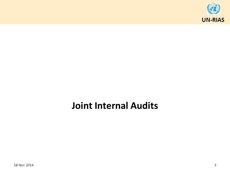 UN-RIAS Joint Internal Audits 18 Nov 20143
