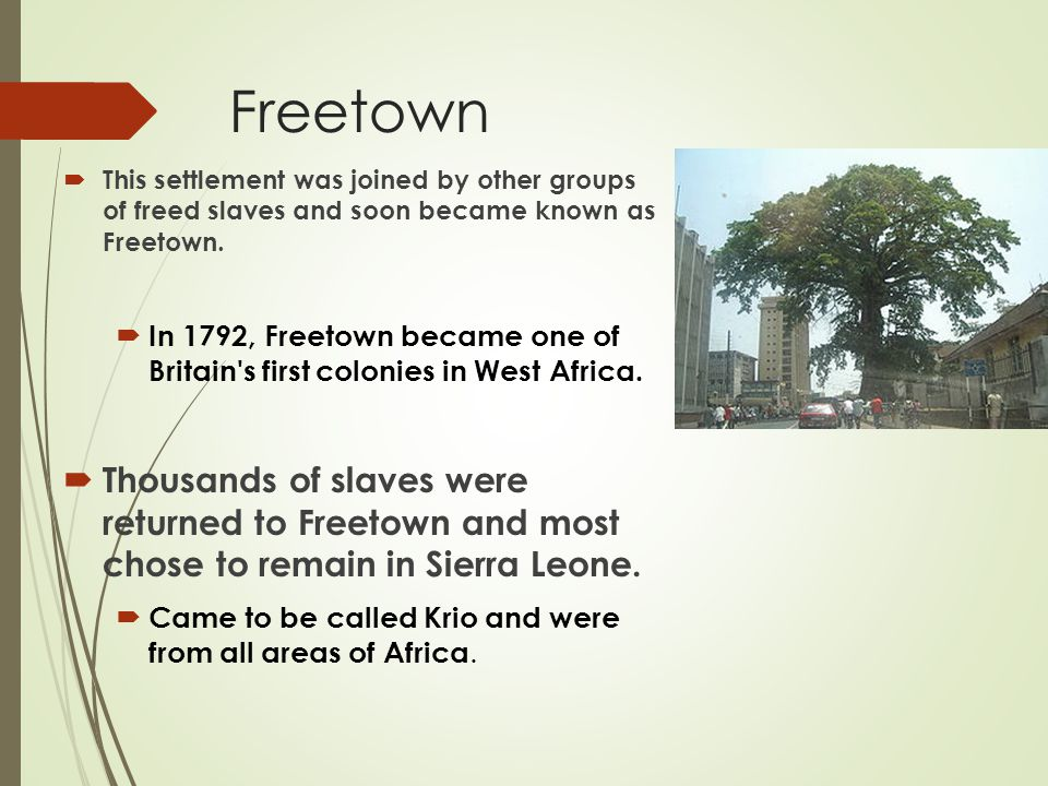 Freetown  This settlement was joined by other groups of freed slaves and soon became known as Freetown.