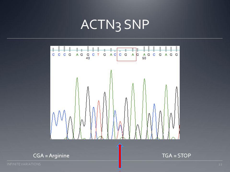 ACTN3 SNP CGA = ArginineTGA = STOP 22INFINITE VARIATIONS