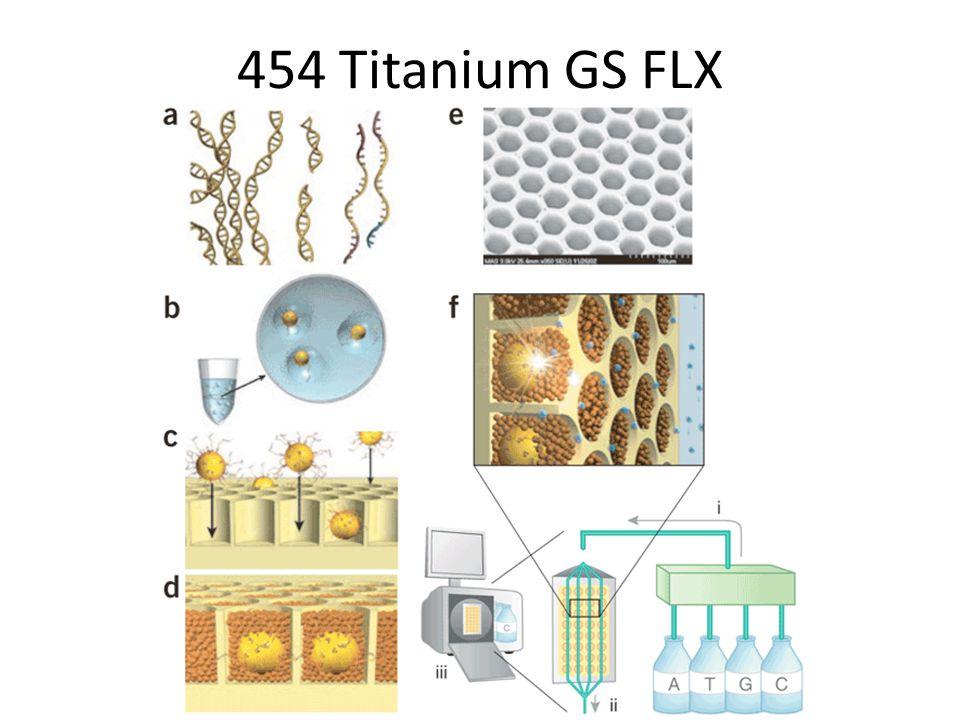 454 Titanium GS FLX