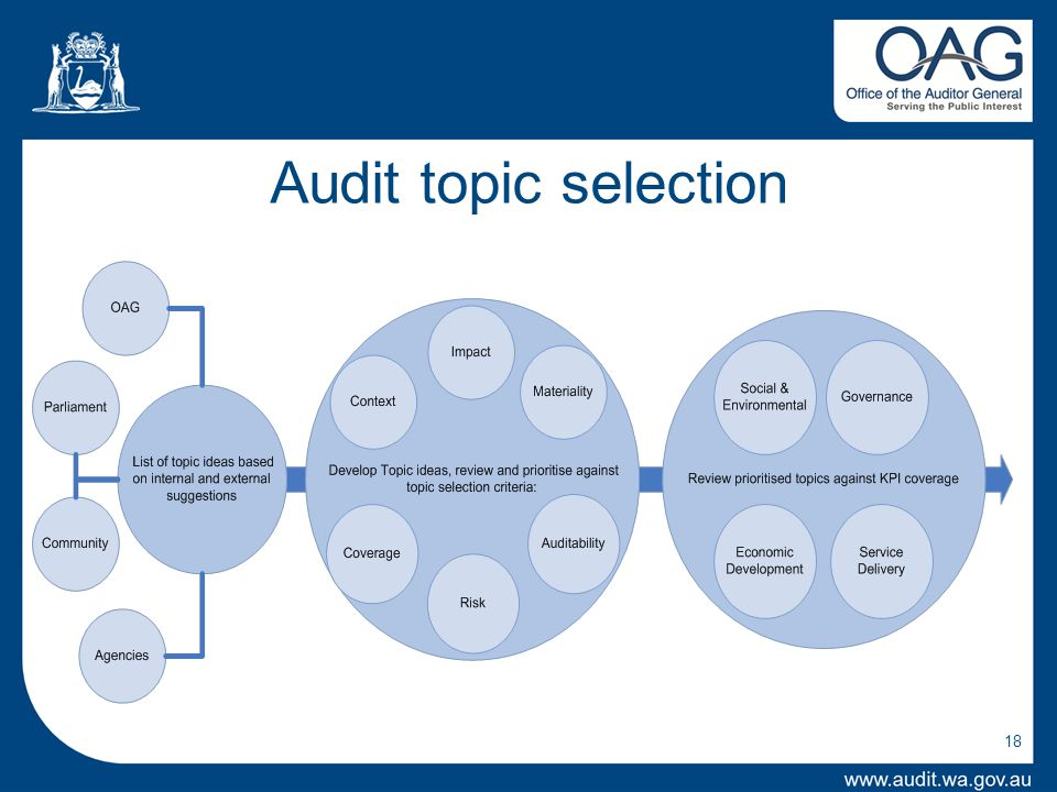 Audit topic selection 18