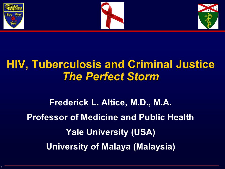 1 HIV, Tuberculosis and Criminal Justice The Perfect Storm Frederick L.