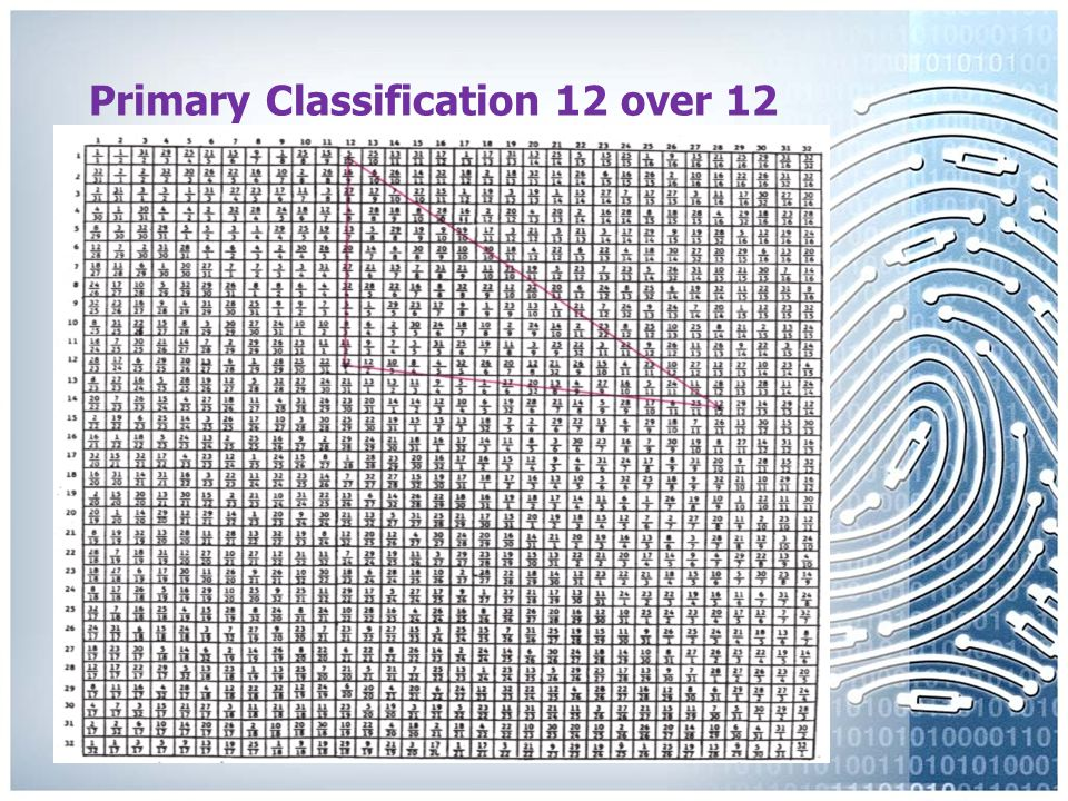 Primary Classification First Reference Sequence