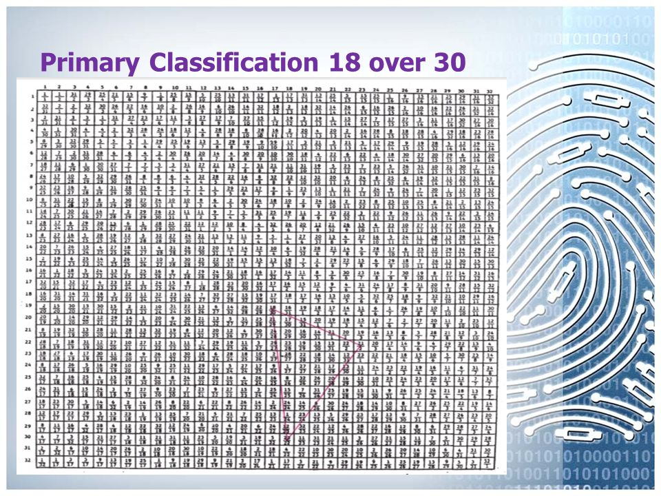 Primary Classification 12 over 12