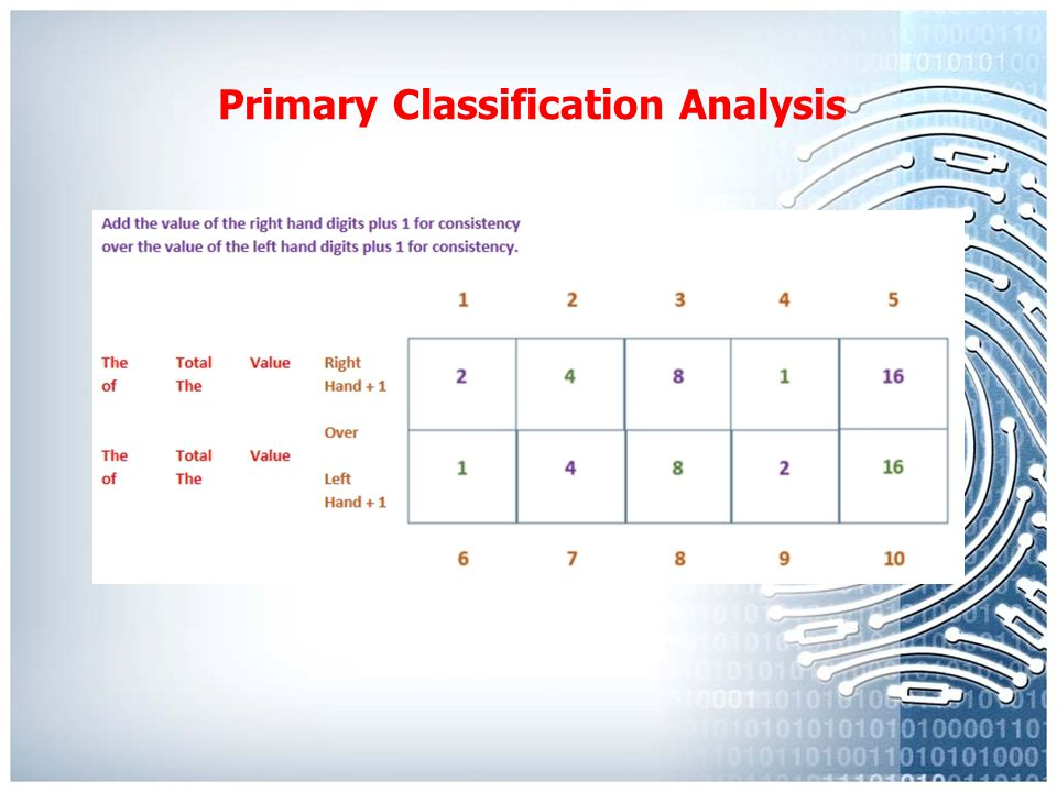 Primary Classification Analysis Male & Female Frequency of Whorl Patterns