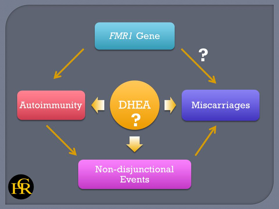 DHEA FMR1 Gene Miscarriages Non-disjunctional Events Autoimmunity ? ?