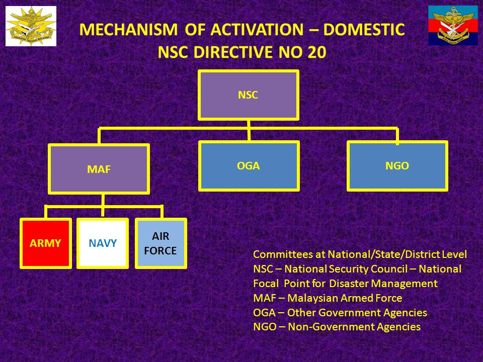 MECHANISM OF ACTIVATION – DOMESTIC NSC DIRECTIVE NO 20 NSC MAF OGANGO ARMYNAVY AIR FORCE Committees at National/State/District Level NSC – National Se
