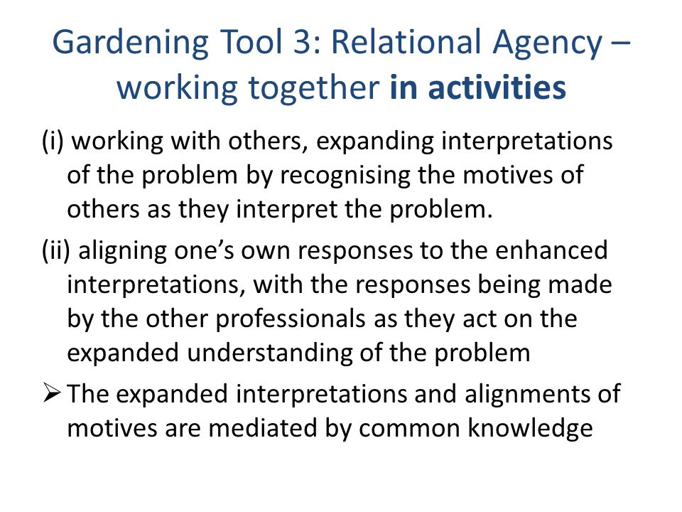 Gardening Tool 3: Relational Agency – working together in activities (i) working with others, expanding interpretations of the problem by recognising the motives of others as they interpret the problem.