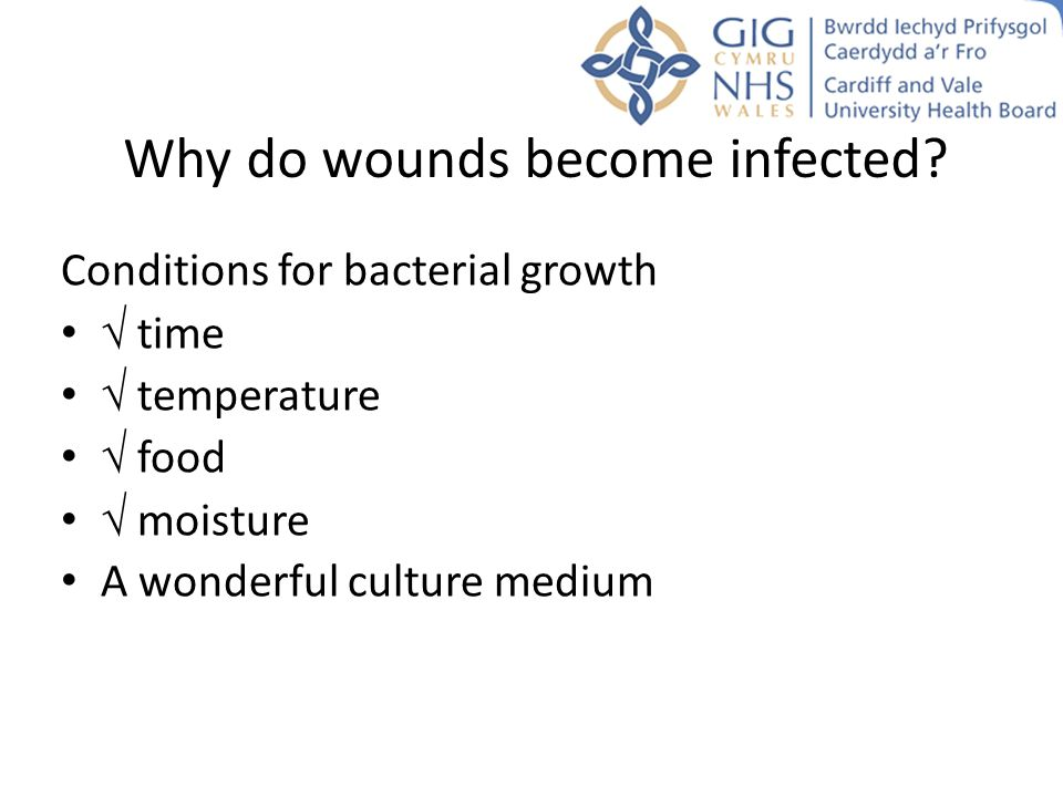 Why do wounds become infected? Conditions for bacterial growth  time  temperature  food  moisture A wonderful culture medium