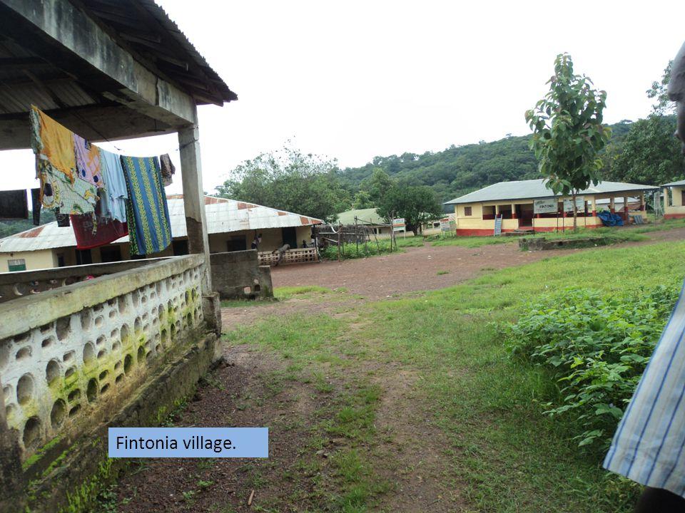 Fintonia village.