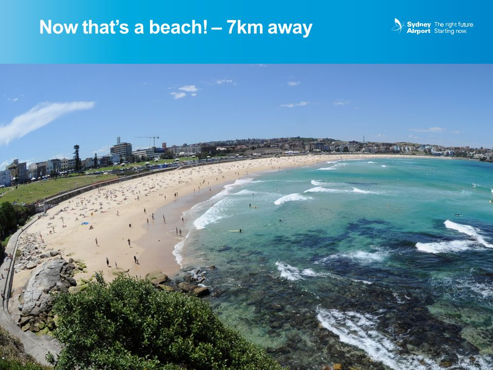 Now that's a beach! – 7km away 6