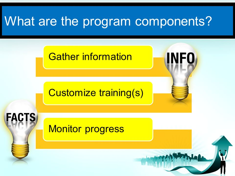What are the program components Gather informationCustomize training(s)Monitor progress