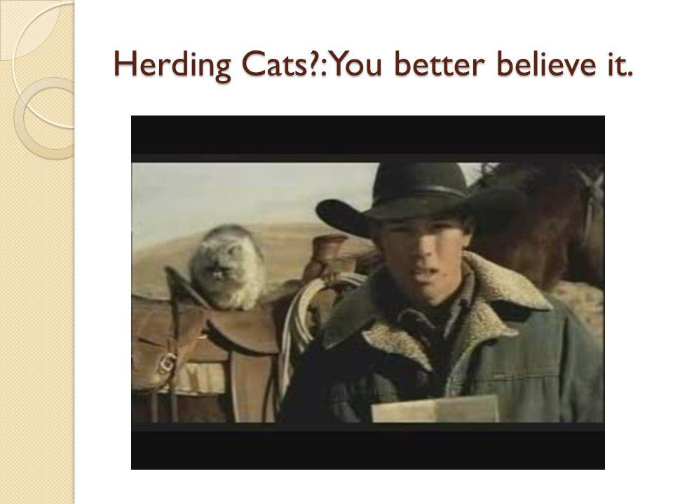 Herding Cats :You better believe it.