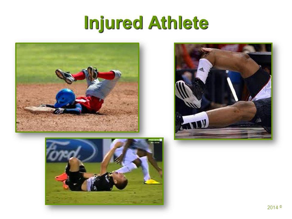 Injured Athlete 2014 ©