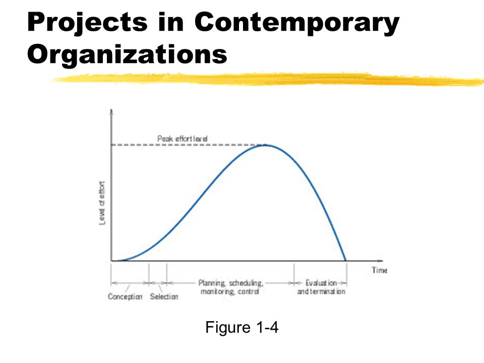 Projects in Contemporary Organizations Figure 1-4