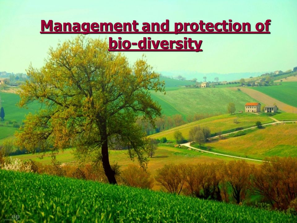 Management and protection of bio-diversity