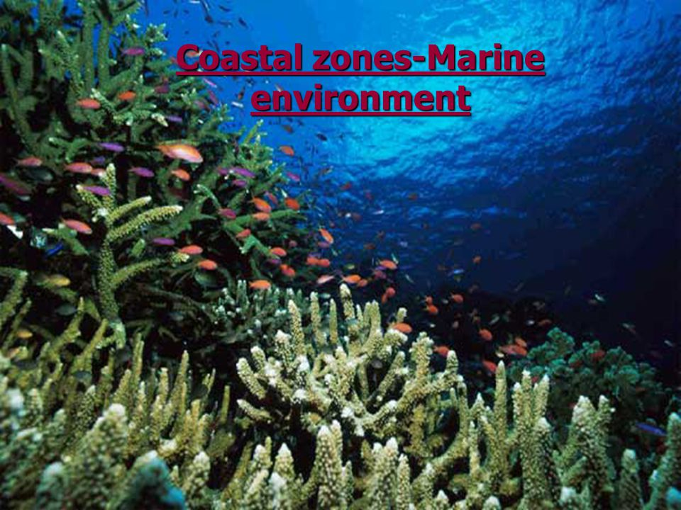 Coastal zones-Marine environment