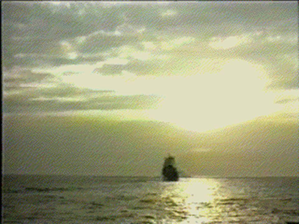 ECDL'2000 - Lisbon, September 2000 © 2000, nmg 10