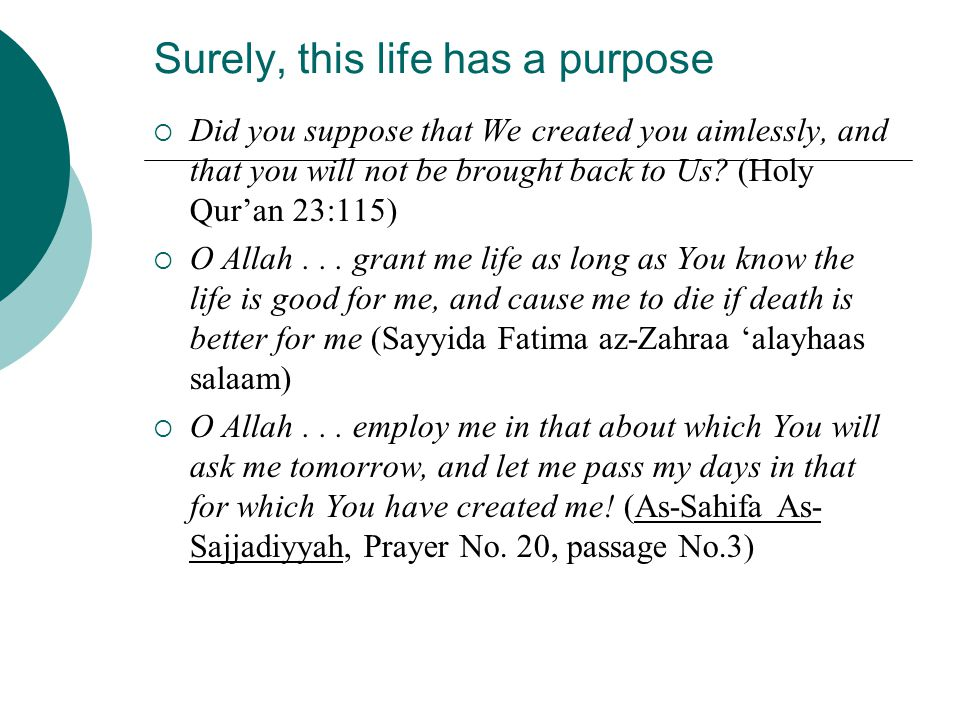 Surely, this life has a purpose  Did you suppose that We created you aimlessly, and that you will not be brought back to Us? (Holy Qur'an 23:115)  O