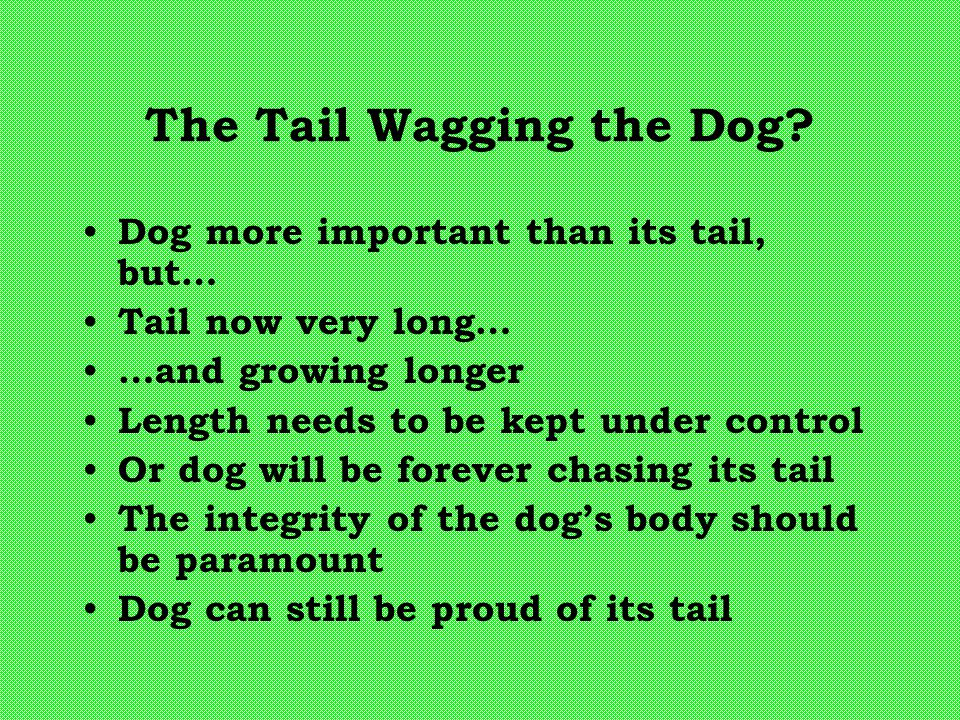 The Tail Wagging the Dog? Dog more important than its tail, but… Tail now very long… …and growing longer Length needs to be kept under control Or dog