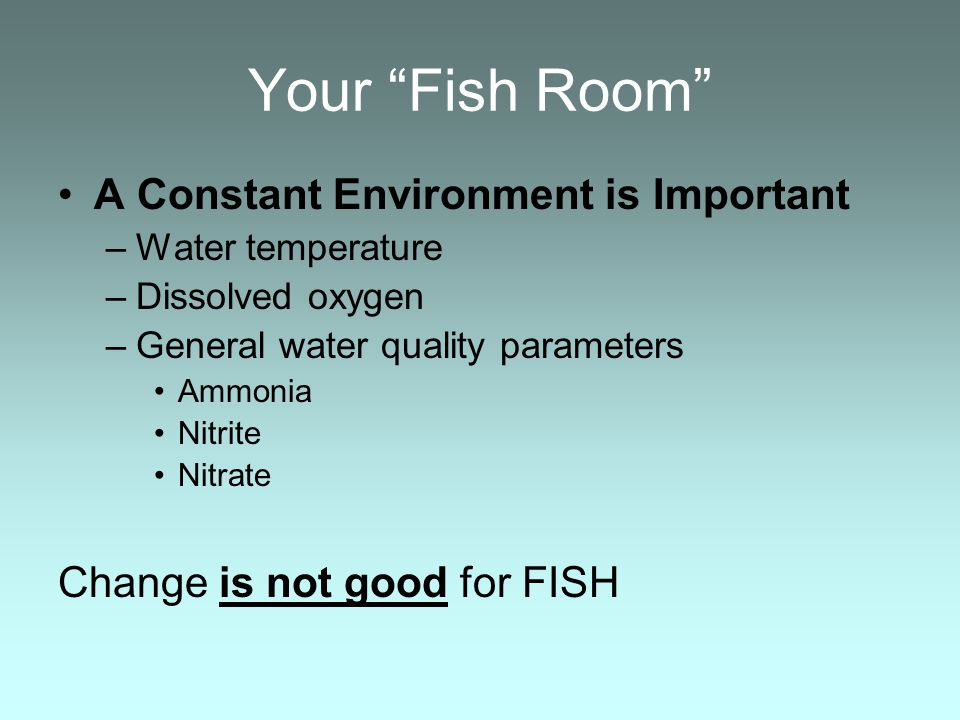 Your Fish Room A Constant Environment is Important –Water temperature –Dissolved oxygen –General water quality parameters Ammonia Nitrite Nitrate Change is not good for FISH
