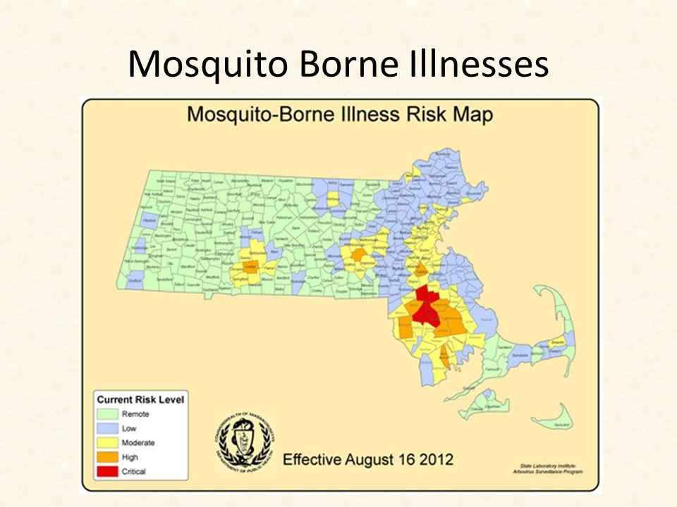 Mosquito Borne Illnesses