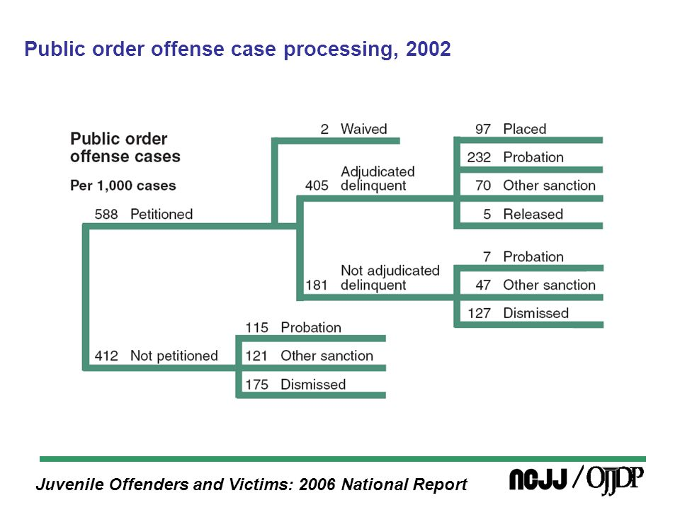 Juvenile Offenders and Victims: 2006 National Report Public order offense case processing, 2002