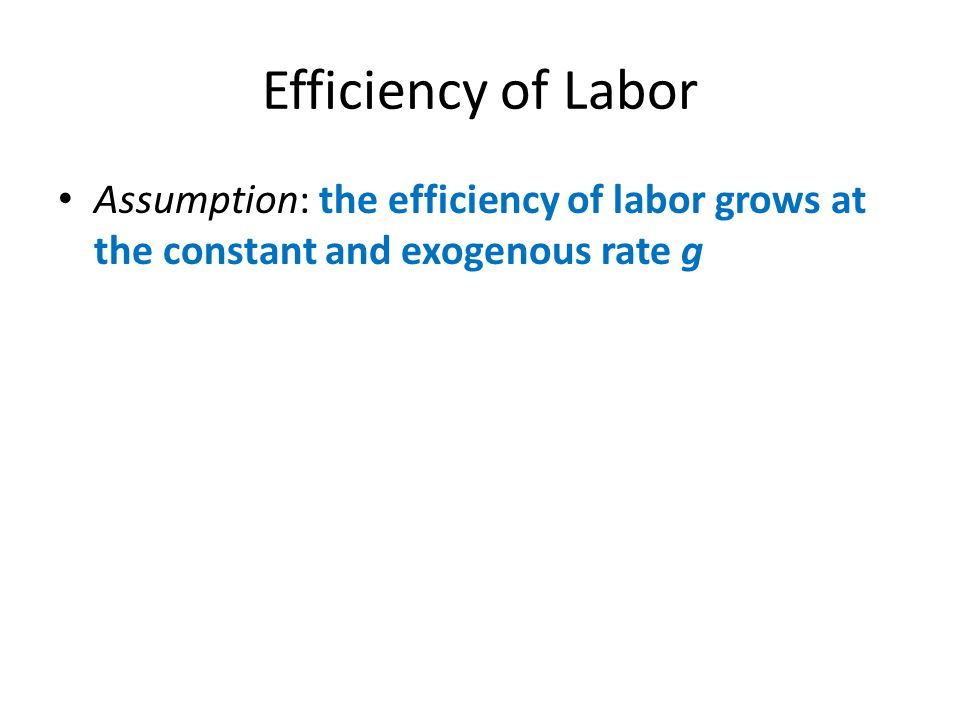 Efficiency of Labor Assumption: the efficiency of labor grows at the constant and exogenous rate g
