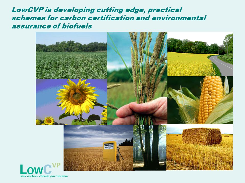 LowCVP is developing cutting edge, practical schemes for carbon certification and environmental assurance of biofuels
