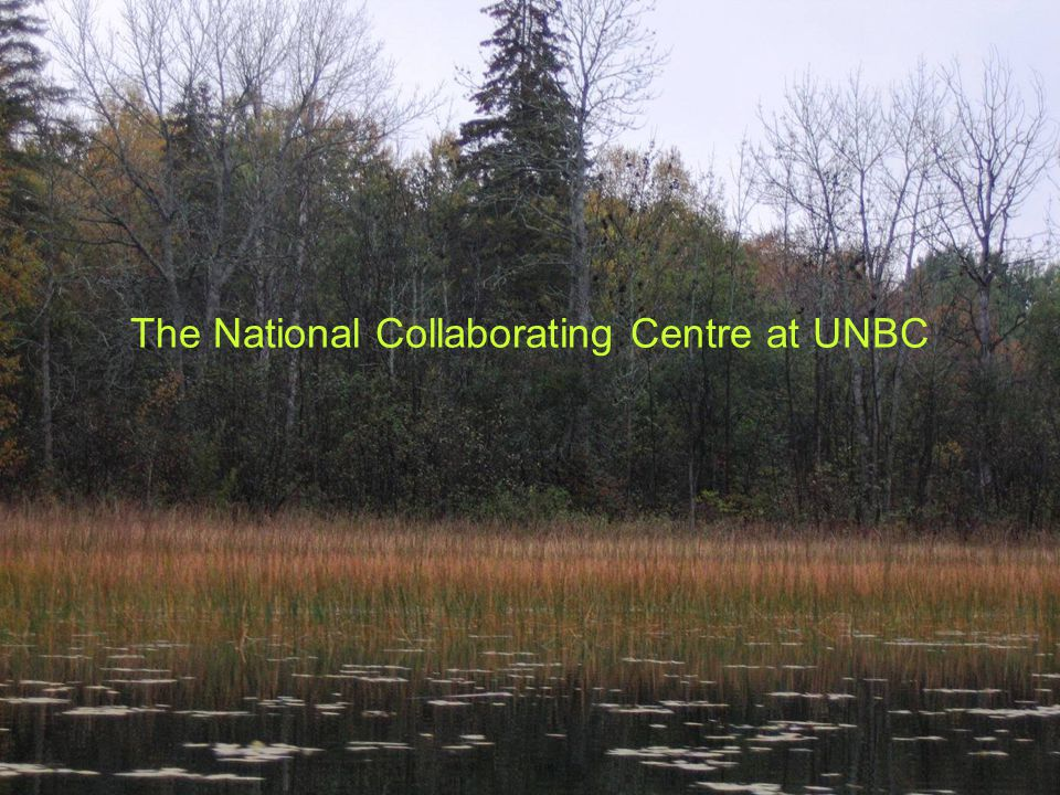 The National Collaborating Centre Located at UNBC One of six NCCs established by PHAC Only population based NCC National in scope with provincial and regional applications