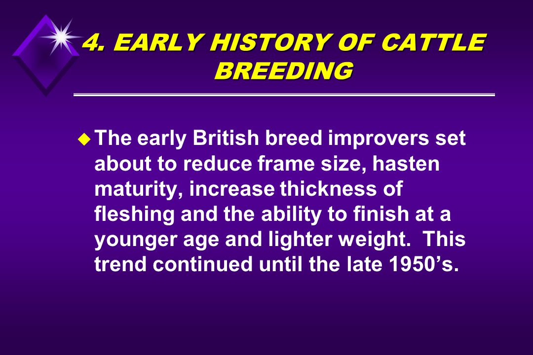 4. EARLY HISTORY OF CATTLE BREEDING u The early British breed improvers set about to reduce frame size, hasten maturity, increase thickness of fleshin