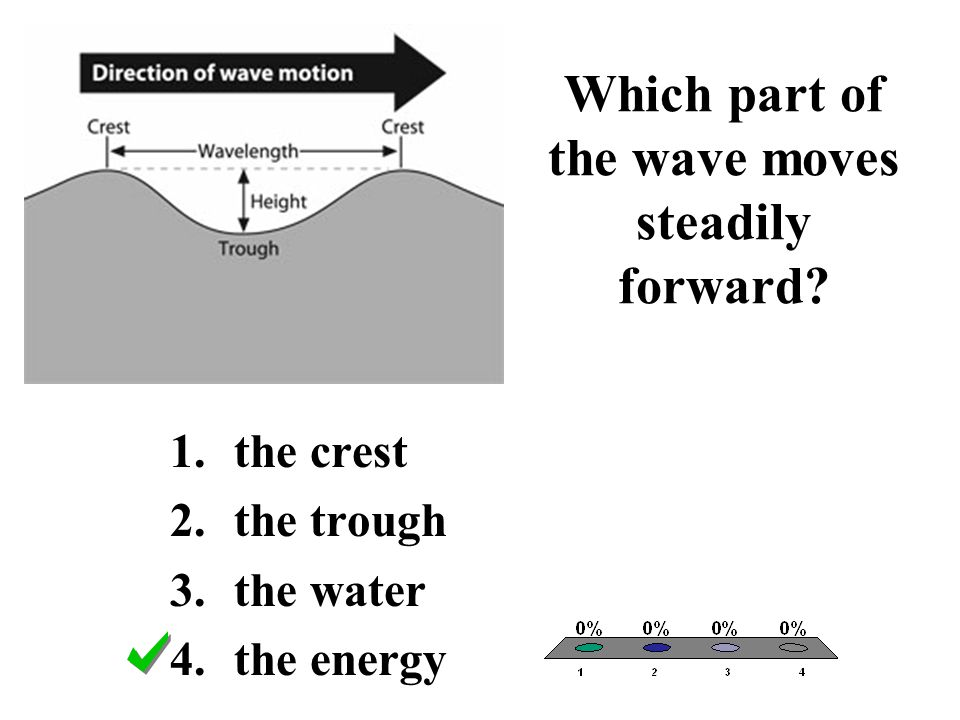 Which part of the wave moves steadily forward? 1.the crest 2.the trough 3.the water 4.the energy