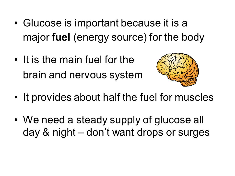 Glucose is important because it is a major fuel (energy source) for the body It is the main fuel for the brain and nervous system It provides about half the fuel for muscles We need a steady supply of glucose all day & night – don't want drops or surges