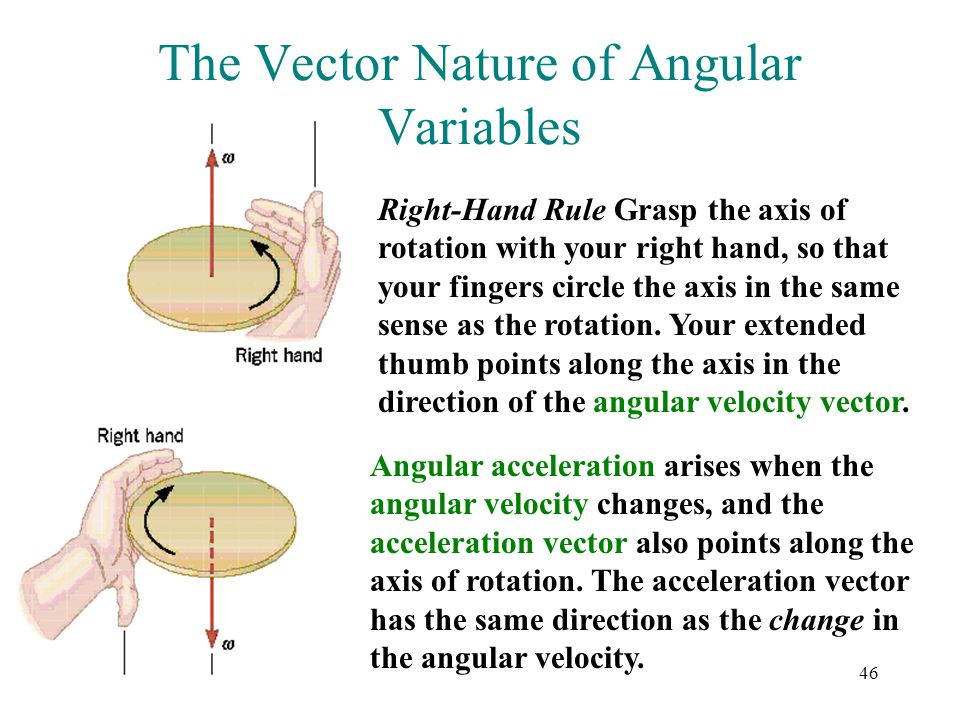 46 The Vector Nature of Angular Variables Right-Hand Rule Grasp the axis of rotation with your right hand, so that your fingers circle the axis in the