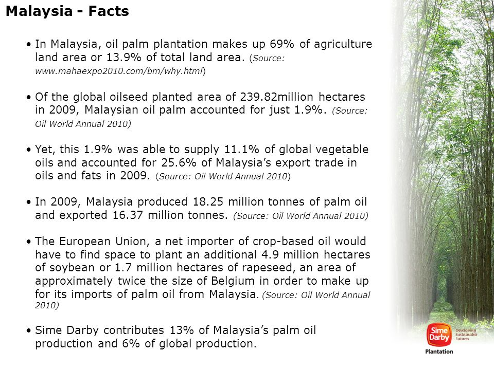 Malaysia - Facts In Malaysia, oil palm plantation makes up 69% of agriculture land area or 13.9% of total land area. (Source: www.mahaexpo2010.com/bm/