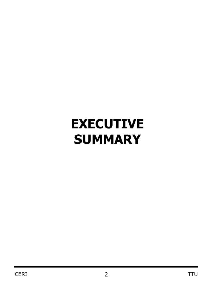 CERI TTU 2 EXECUTIVE SUMMARY