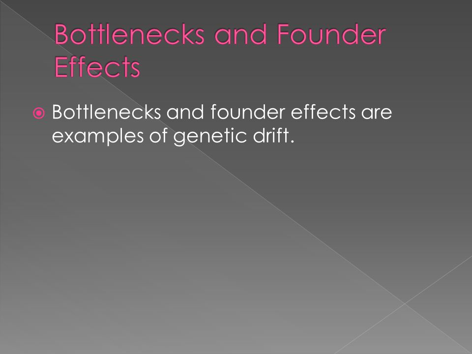  Bottlenecks and founder effects are examples of genetic drift.