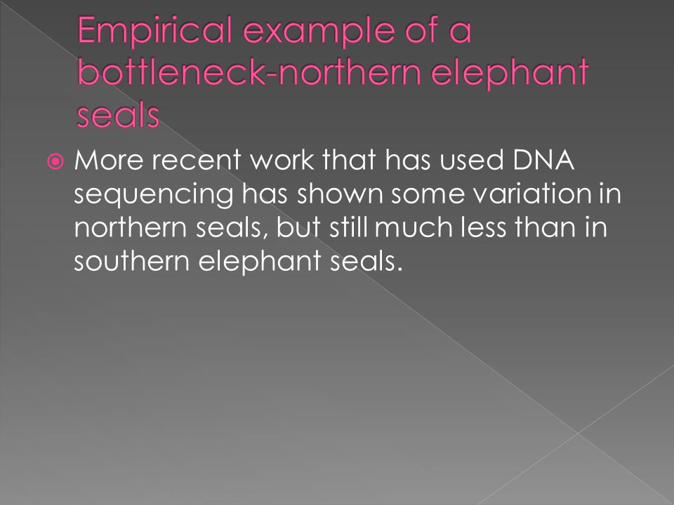  More recent work that has used DNA sequencing has shown some variation in northern seals, but still much less than in southern elephant seals.