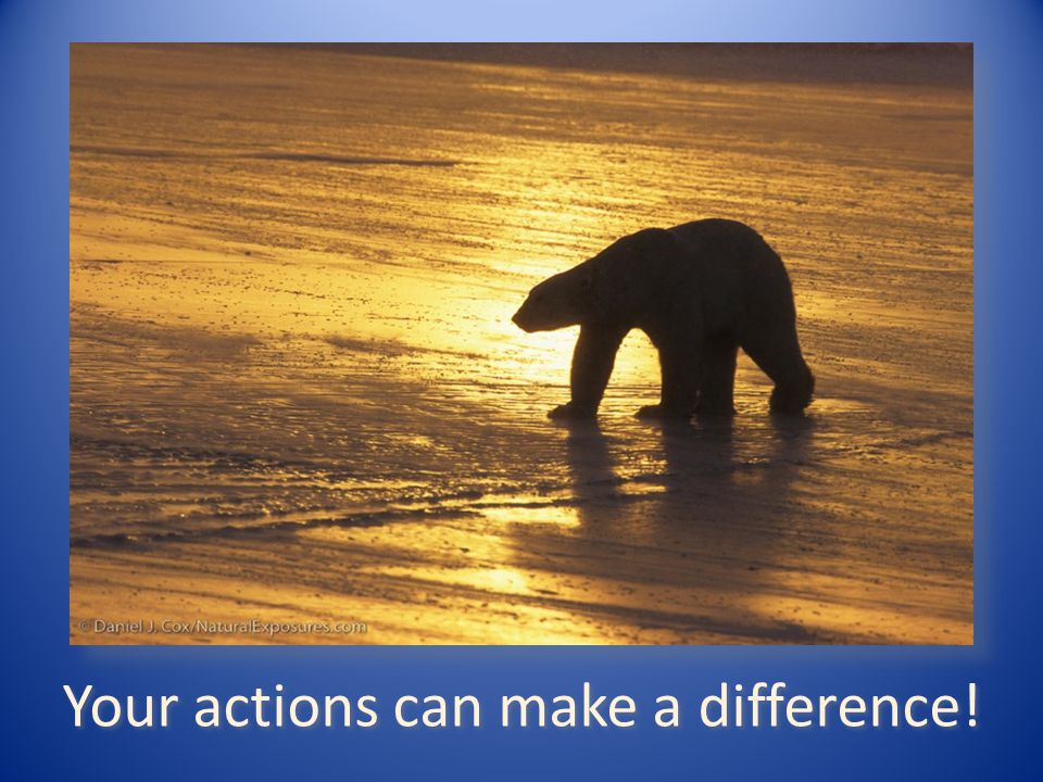 Your actions can make a difference!