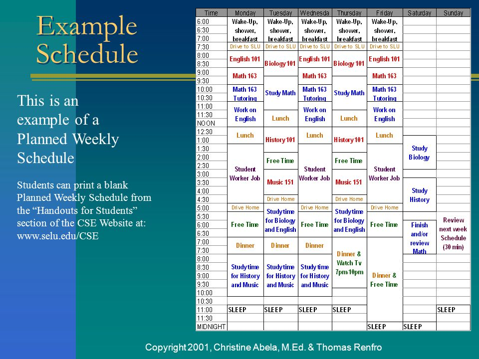 Copyright 2001, Christine Abela, M.Ed. & Thomas Renfro This is an example of a Planned Weekly Schedule Students can print a blank Planned Weekly Sched