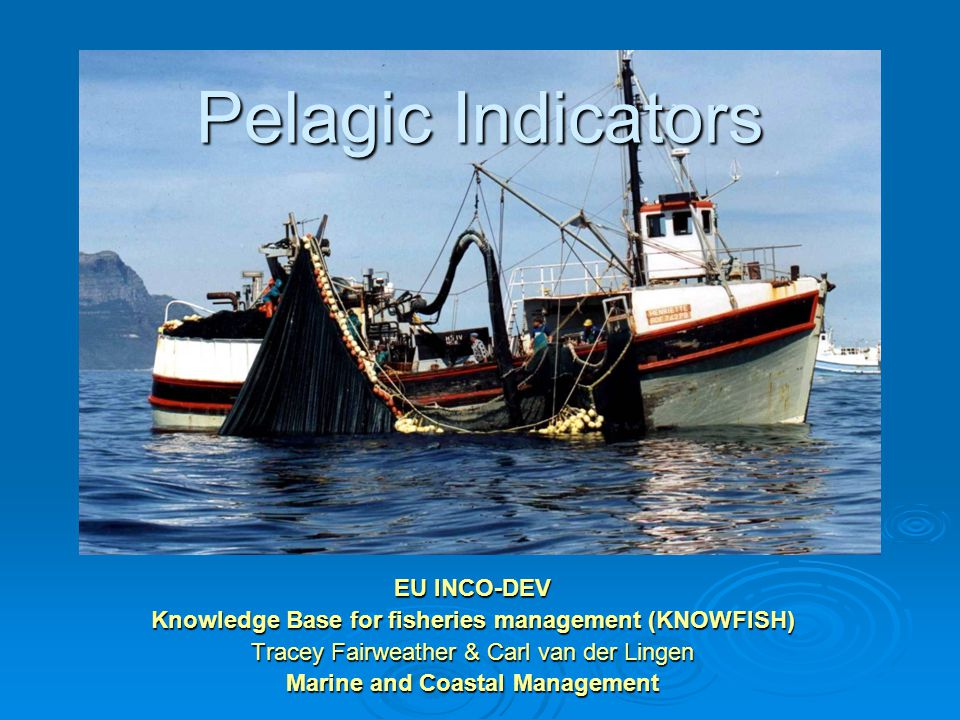 Pelagic Indicators EU INCO-DEV Knowledge Base for fisheries management (KNOWFISH) Tracey Fairweather & Carl van der Lingen Marine and Coastal Management