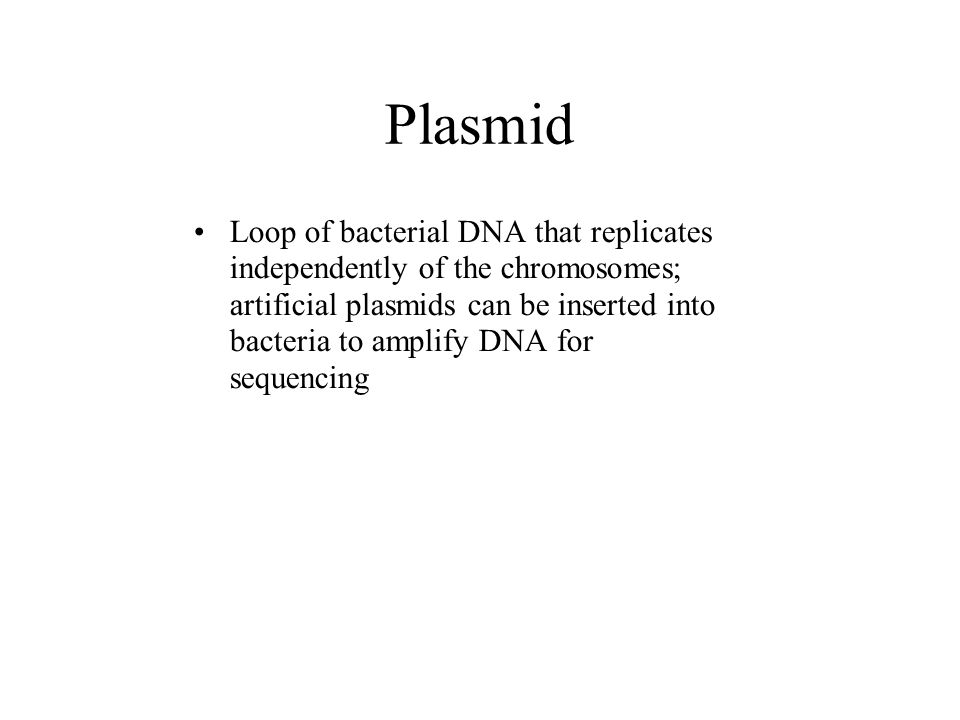 Plasmid Loop of bacterial DNA that replicates independently of the chromosomes; artificial plasmids can be inserted into bacteria to amplify DNA for sequencing