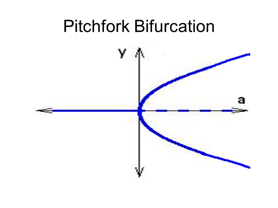 Pitchfork Bifurcation