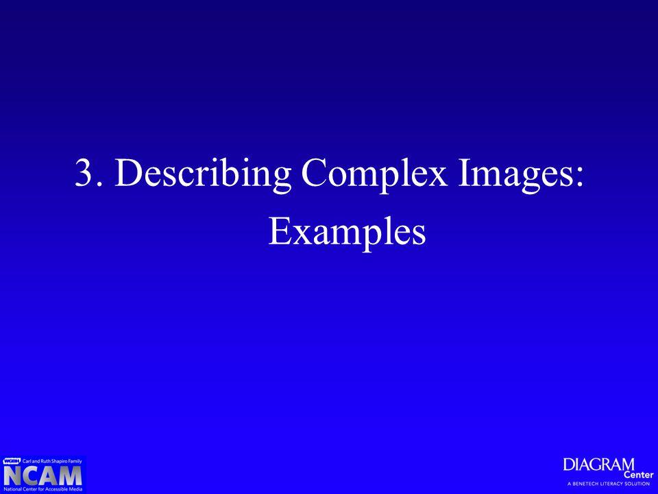 3. Describing Complex Images: Examples