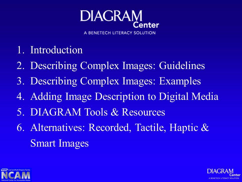 1.Introduction 2.Describing Complex Images: Guidelines 3.Describing Complex Images: Examples 4.Adding Image Description to Digital Media 5.DIAGRAM Too