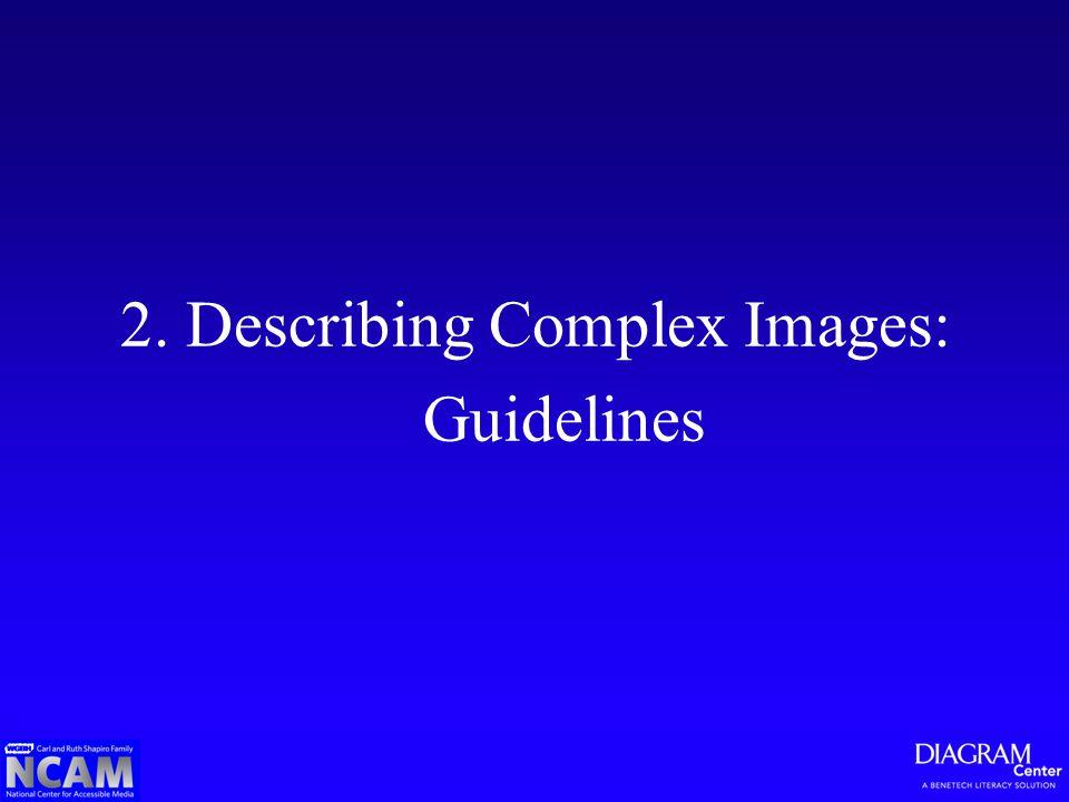 2. Describing Complex Images: Guidelines