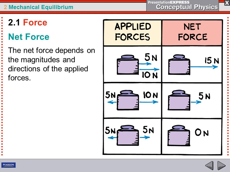 2 Mechanical Equilibrium Net Force The net force depends on the magnitudes and directions of the applied forces.