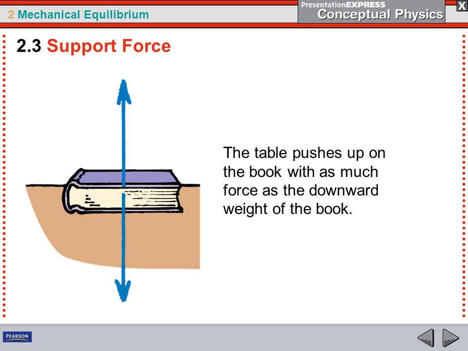 2 Mechanical Equilibrium The table pushes up on the book with as much force as the downward weight of the book. 2.3 Support Force