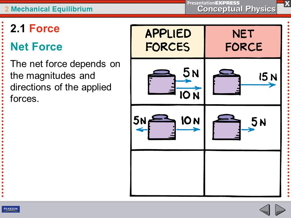 2 Mechanical Equilibrium The upward support force is as much as the downward pull of gravity.