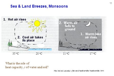 11 Sea & Land Breezes, Monsoons http://sol.sci.uop.edu/~jfalward/heattransfer/heattransfer.html 35 o C20 o C17 o C11 o C What is the role of heat capa